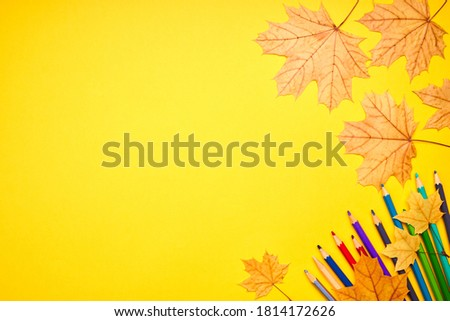 education and stationery concept. above view for yellow desk. decorated fall leaves and color pencils, markers and other tools. empty space for design.