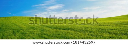 Panoramic natural landscape with green grass field and blue sky with clouds with curved horizon line. Panorama summer spring meadow. Royalty-Free Stock Photo #1814432597