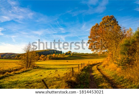 Autumn rural road landscape. Autumn rural country road. Golden autumn nature landscape. Rural autumn nature landscape #1814453021