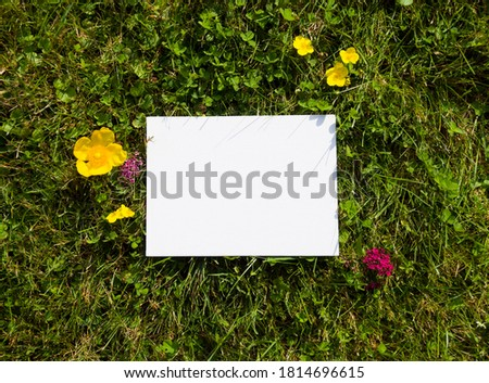 White canvas on the natural background. Sunny day in the park.  Free space for your design