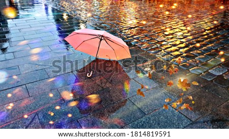 Rainy  Weather ,Autumn leaves falling  on road , pink umbrella on pavement city night light blurred at evening  Royalty-Free Stock Photo #1814819591