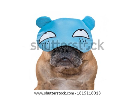 Funny French Bulldog dog wearing a sleeping mask with cartoon eyes on white background