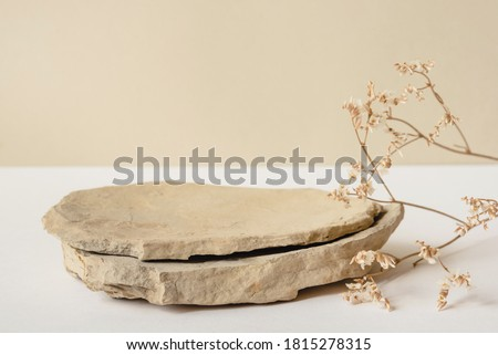 Background for cosmetic products of natural beige color. Stone podium and dry flower on a white background. Front view. Royalty-Free Stock Photo #1815278315