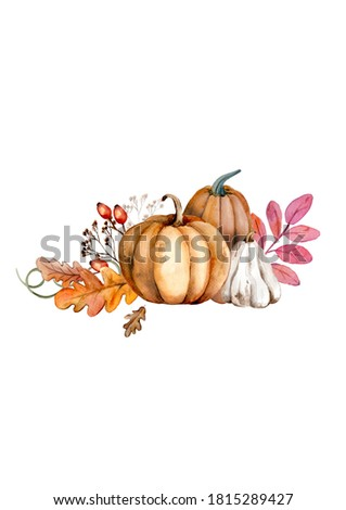Watercolor pumpkin composition, floral and vegetable composition, , Halloween pictures, autumn design elements. Harvest illustration isolated on white background