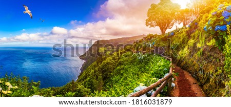 Viewpoint Ponta do Sossego, Sao Miguel Island, Azores, Portugal. View of flowers on a mountain and the ocean in Miradouro da Ponta do Sossego Nordeste, Sao Miguel, Azores, Portugal.  Royalty-Free Stock Photo #1816031879