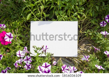 White canvas on the natural background with flowers. Sunny day in the park.  Free space for your design