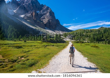 Young woman with a hat, trekking poles, a backpack hiking on a trail through green meadows in the Italian Alps. Pale di San Martino mountain peaks are visible in the background. Trentino, Italy