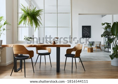 Stylish and botany interior of dining room with design craft wooden table, chairs, a lof of plants, window, poster map and elegant accessories in modern home decor. Template. Royalty-Free Stock Photo #1816544111