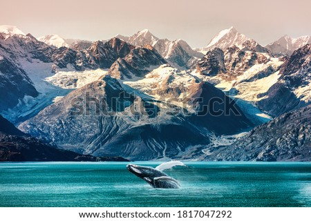 Alaska whale watching boat excursion. Inside passage mountain range landscape luxury travel cruise concept. Royalty-Free Stock Photo #1817047292
