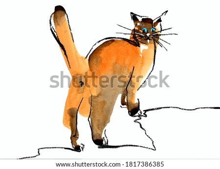 Brown-orange cat with raised tail rear view. Turn around. watercolor spots with charcoal pencil graphics. Sketch