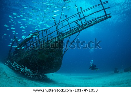 Women diver explores the wrecks at the Bridge dive site on the island of Sint Maarten, Dutch Caribbean Royalty-Free Stock Photo #1817491853