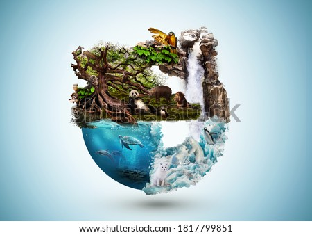 Concept art of Earth and animal life in different averments. Excellent for themes: Earth, Nature, Preservation of wild life and many more. Royalty-Free Stock Photo #1817799851