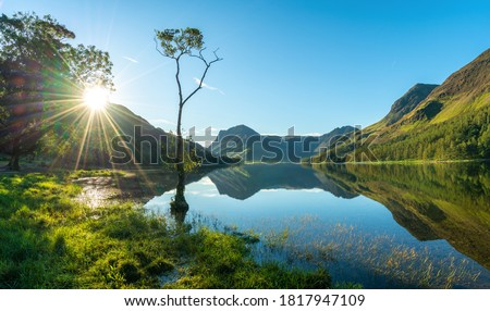 Lone tree and Buttermere lake at Sunrise. Lake District. England Royalty-Free Stock Photo #1817947109