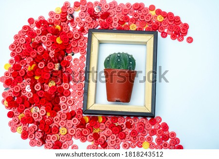 Cactus in wooden picture flame with group of red plastic buttons on white background
