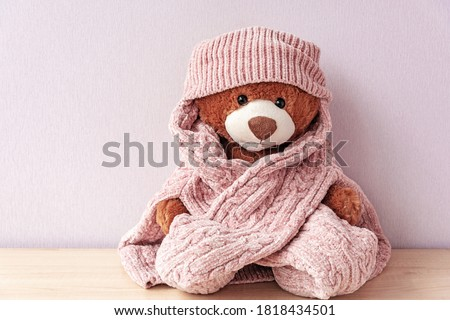 Plush stuffed toy in knitted hat and sweater. Soft teddy bear with scarf, prepared for winter or autumn colds. Love and care, cuddly for nursery. Valentines present plaything, warmth and fondness #1818434501