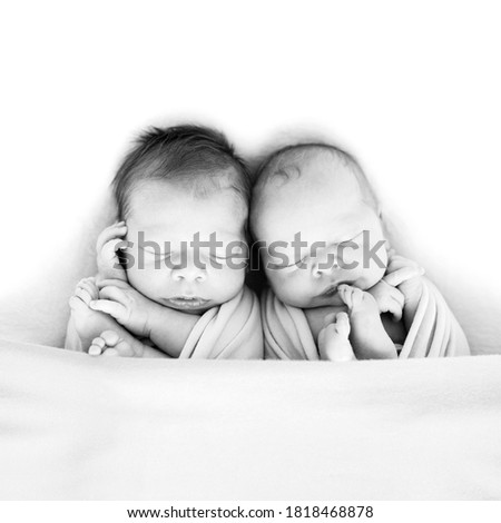 Newborn twins wrapped in a wrap sleeping on blanket. Babies lie together. Sibling love from birth - sisters, brothers. Black and white picture.