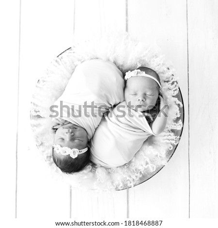 Newborn twins wrapped in a wrap sleeping on fluffy pad in bowl. Babies lie together. Sibling love from birth - sisters, brothers. Black and white picture.