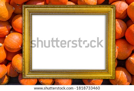 gold frame on pumpkin field, free space for your design, mock up