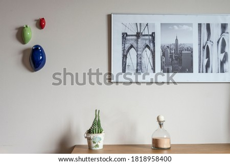 A shelving with a cactus, and three pictures and decorative slugs on the wall