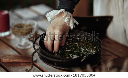 the witch cooks an elixir with herbs in a cauldron Royalty-Free Stock Photo #1819055804