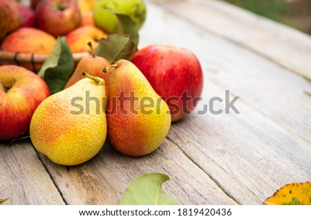 Fruits: apples and pears on old wooden table. Bio Healthy food. Royalty-Free Stock Photo #1819420436