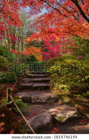 Stone path surrounded by lush, vibrant fall colors at Seattle Japanese Garden