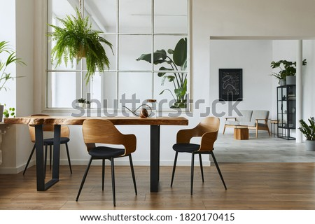 Stylish and botany interior of dining room with design craft wooden table, chairs, a lof of plants, big window, poster map and elegant accessories in modern home decor. Template.