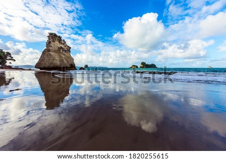 Ocean tidal wave in the Cathedral Cove. Mirror reflections of clouds in wet sand. The far end of the earth. Travel to New Zealand. The concept of exotic, ecological and photo tourism