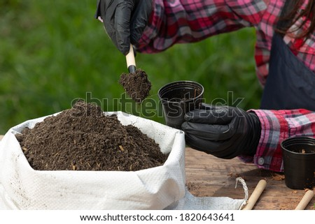 Closeup picture of  Gardener's Hands Planting Plant