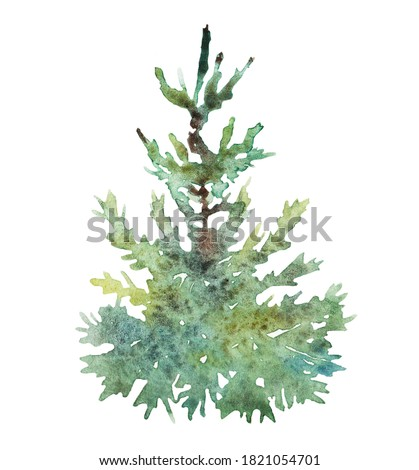 Watercolor little Christmas tree, isolated on white