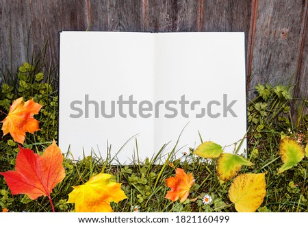 The open album lies on grass with leaves and in the park. White sheet on lawn, free space for your design, mock up