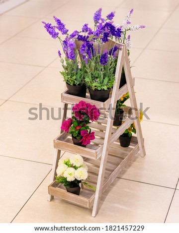 Artificial flower plants on the showcase #1821457229