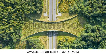 Aerial top down view of ecoduct or wildlife crossing - vegetation covered bridge over a motorway that allows wildlife to safely cross over Royalty-Free Stock Photo #1821548093
