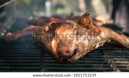 Tasty pork on a barbecue grill. Close up of whole pig cooked grilled meat in BBQ of garden home at holiday vacations. Crispy roasted piglet on a spit in Spain.