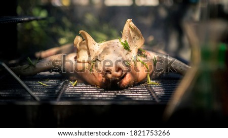 BBQ whole grilled pig in garden house. Home cooking of crispy roasted pork. Close up of piglet roast on a spit, spanish barbecued hot meat.