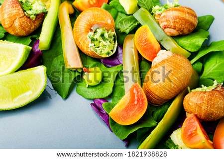 Salad with snails,spinach, tomato and pepper.Healthy vegetable salad #1821938828