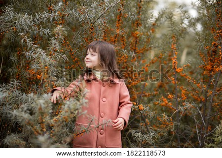 Smiling beautiful girl with bangs in a brown coat and picks sea buckthorn berries. Autumn harvest. horizontal photograph of a child.