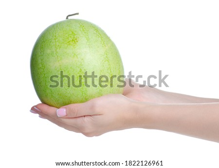 Mini fersh watermelon in hand on white background isolation