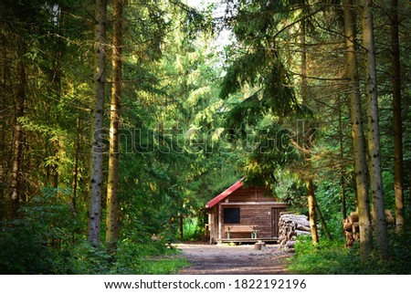 Picture of a cabin in woods on a  summer day.
