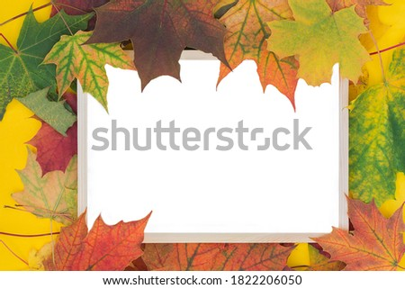 wooden photo frame surrounded by yellow autumn leaves. Space for text, isolated on white. Idea - template for design, autumn photo frame, layout, design for advertising and test