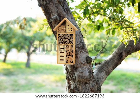 Decorative Insect house with compartments and natural components in a summer garden. Wooden insect house decorative bug hotel, ladybird and bee home for butterfly hibernation and ecological gardening. Royalty-Free Stock Photo #1822687193