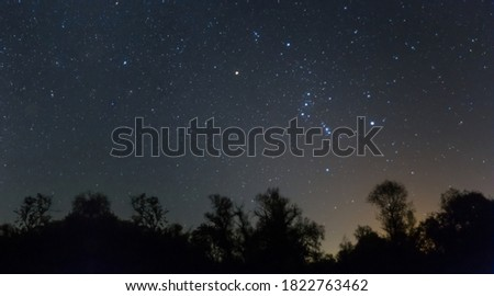 Orion constellation above a night forest silhouette, night starry sky scene Royalty-Free Stock Photo #1822763462