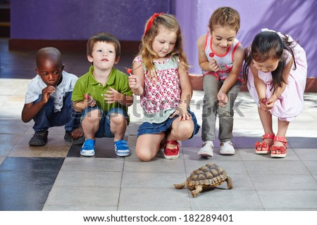 Many interracial children with turtle as pet in a kindergarten #182289401