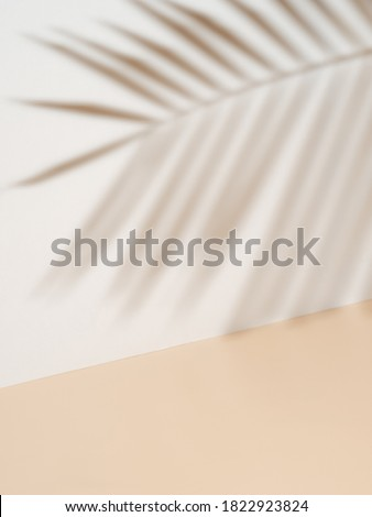 Palm leaf shadow on white wall and cream pastel floor. Abstract background of shadows palm leaf for creative summer minimal mock-up. Neutral tropical palm mockup on light backdrop.Geometric background