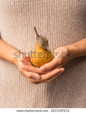 A yellow pear in the women's hands on the background of a beige sweater. Trendy autumn concept in pastel colors. Autumn mood.