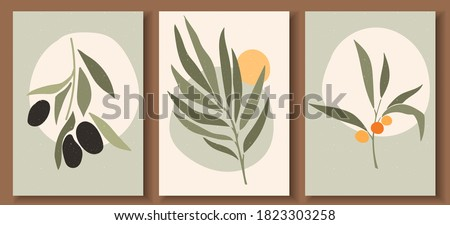 Collection of contemporary art posters in pastel colors. Abstract  geometric elements and strokes, leaves and berries, olive, tangerine. Great design for social media, postcards, print. #1823303258