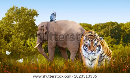 World Animals Day or Wildlife Day theme. Elephant, tiger, parrot, butterflies in nature reserve. Saving planet Earth, protect wildlife sanctuary, protection of endangered species, photo safari concept Royalty-Free Stock Photo #1823313335