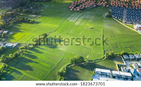 Cultivated land and land plot or land lot. Consist of aerial view of green field, agricultural plant and ridge. That is tract of land for cultivate, owned, sale, development, rent, buy or investment. #1823673701