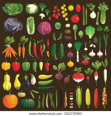 Great collection of the clip art vegetables #182370083