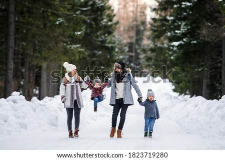 Father and mother with two small children in winter nature, walking in the snow.
